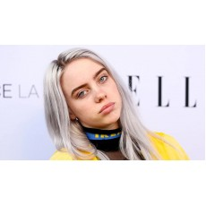 Billie Eilish - Copycat
